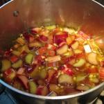 recette sorbet maison
