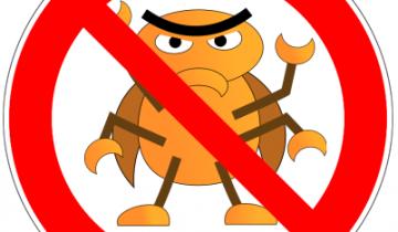 Punaises-interdites